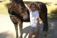 resized_450x374_pony